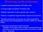 processing via the proteasome
