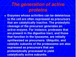 the generation of active proteins
