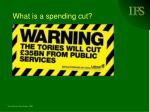 what is a spending cut