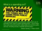 what is a spending cut1