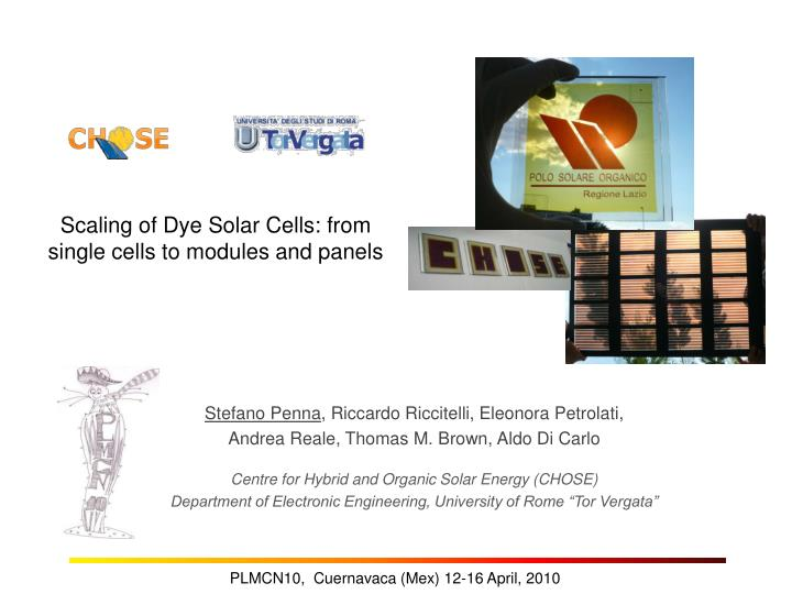 scaling of dye solar cells from single cells to modules and panels n.