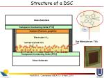 structure of a dsc