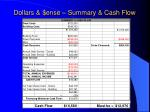 dollars ense summary cash flow