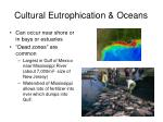 cultural eutrophication oceans