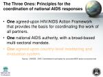 the three ones principles for the coordination of national aids responses