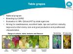 tablegrape breeding and evaluation