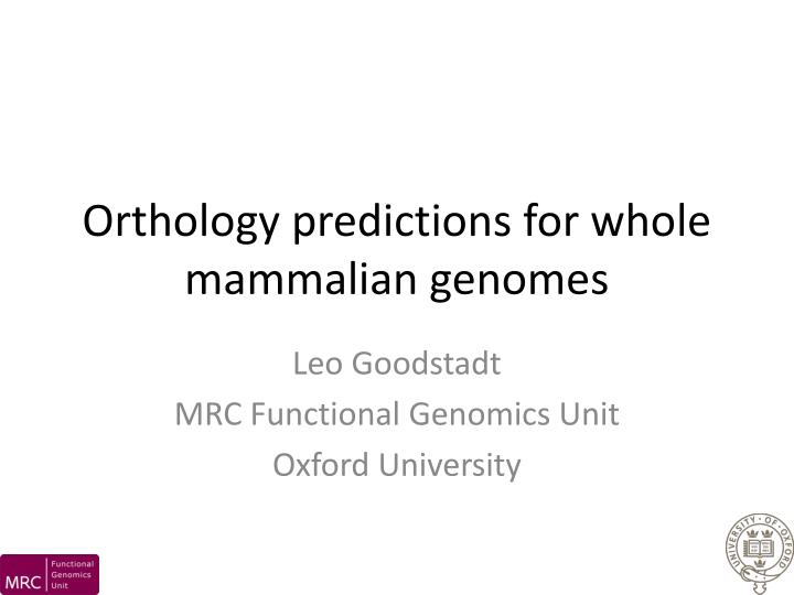 orthology predictions for whole mammalian genomes n.