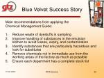 blue velvet success story1