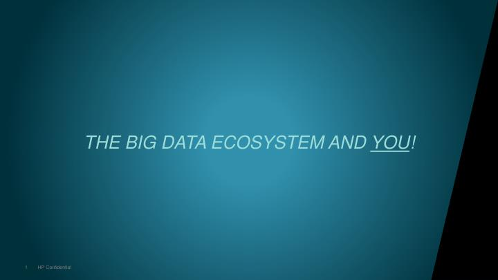 the big data ecosystem and you n.