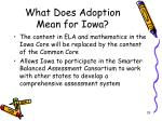 what does adoption mean for iowa