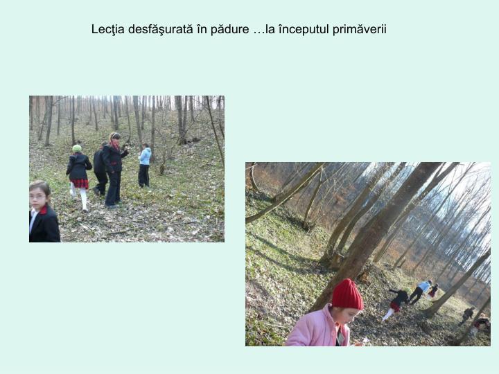 Lecţia desfăşurată în pădure …la începutul primăverii