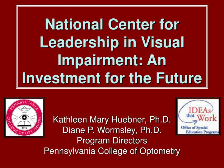 national center for leadership in visual impairment an investment for the future n.