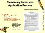 elementary immersion application process