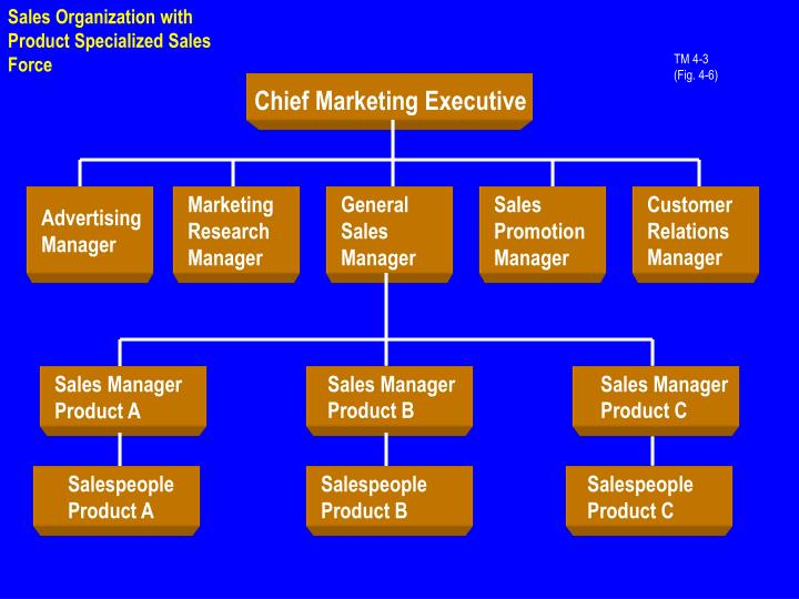 Sales Organization with Product Specialized Sales Force
