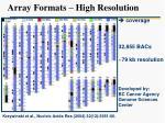 array formats high resolution
