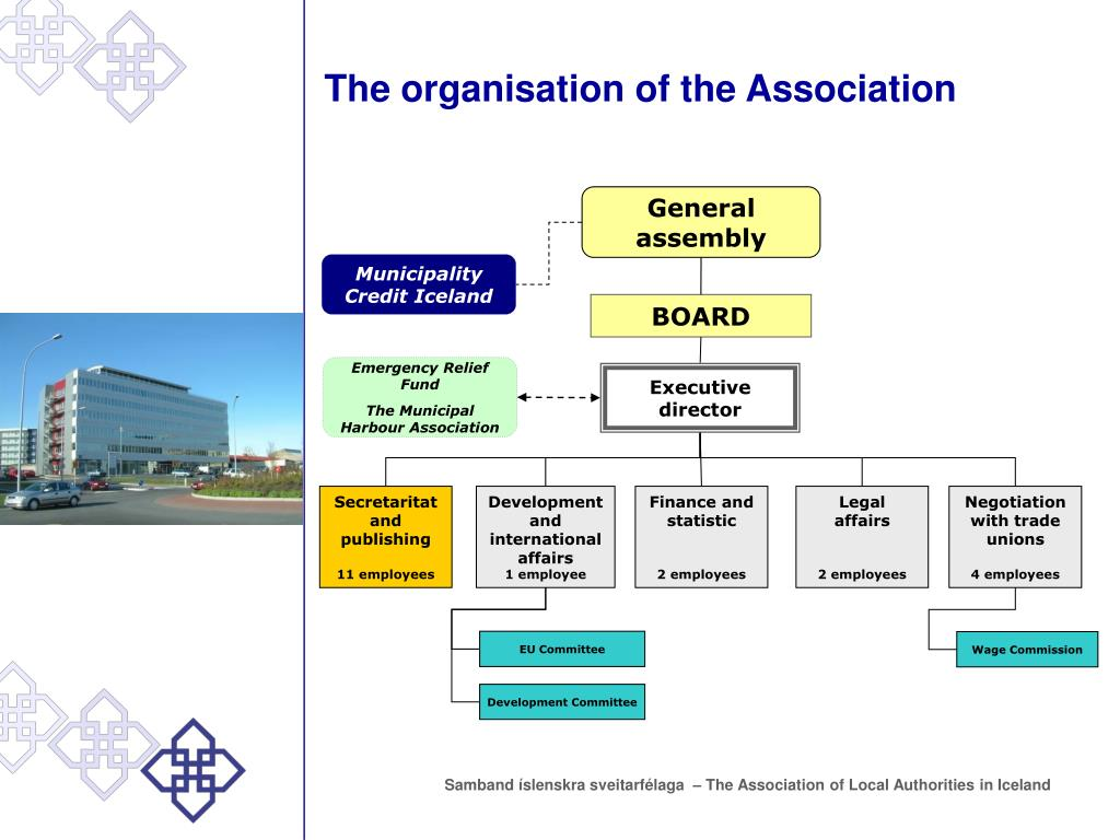 The organisation of the Association