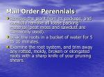 mail order perennials