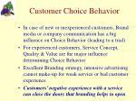 customer choice behavior