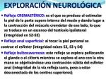 exploraci n neurol gica
