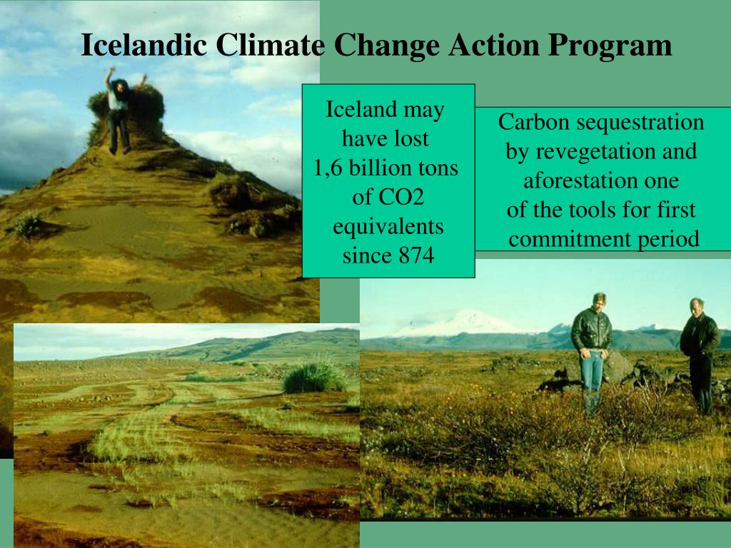 Icelandic Climate Change Action Program