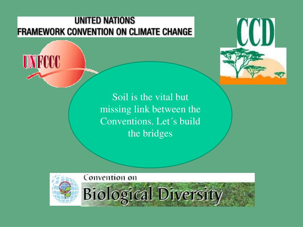 Soil is the vital but missing link between the Conventions. Let´s build the bridges