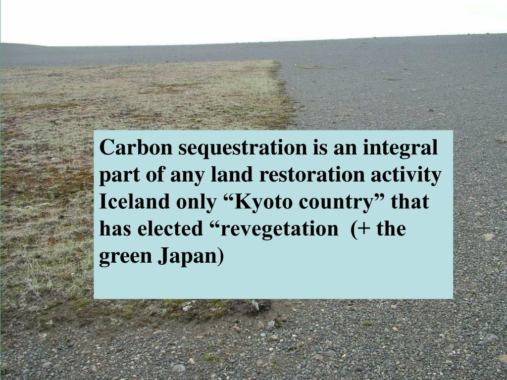 Carbon sequestration is an integral part of any land restoration activity