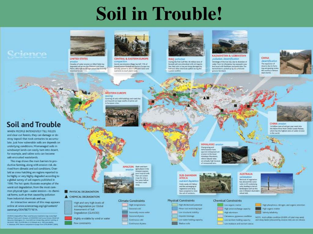 Soil in Trouble!