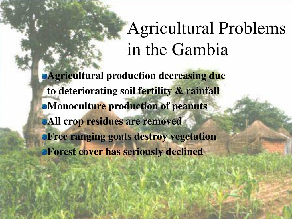 Agricultural Problems in the Gambia