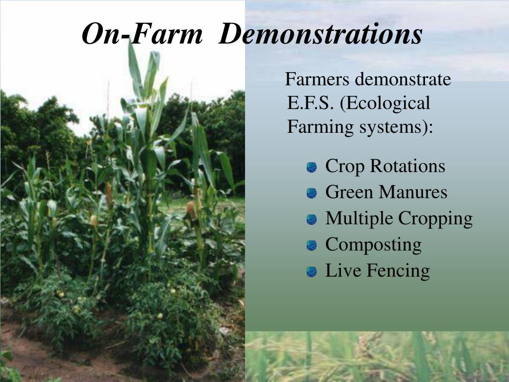 On-Farm  Demonstrations