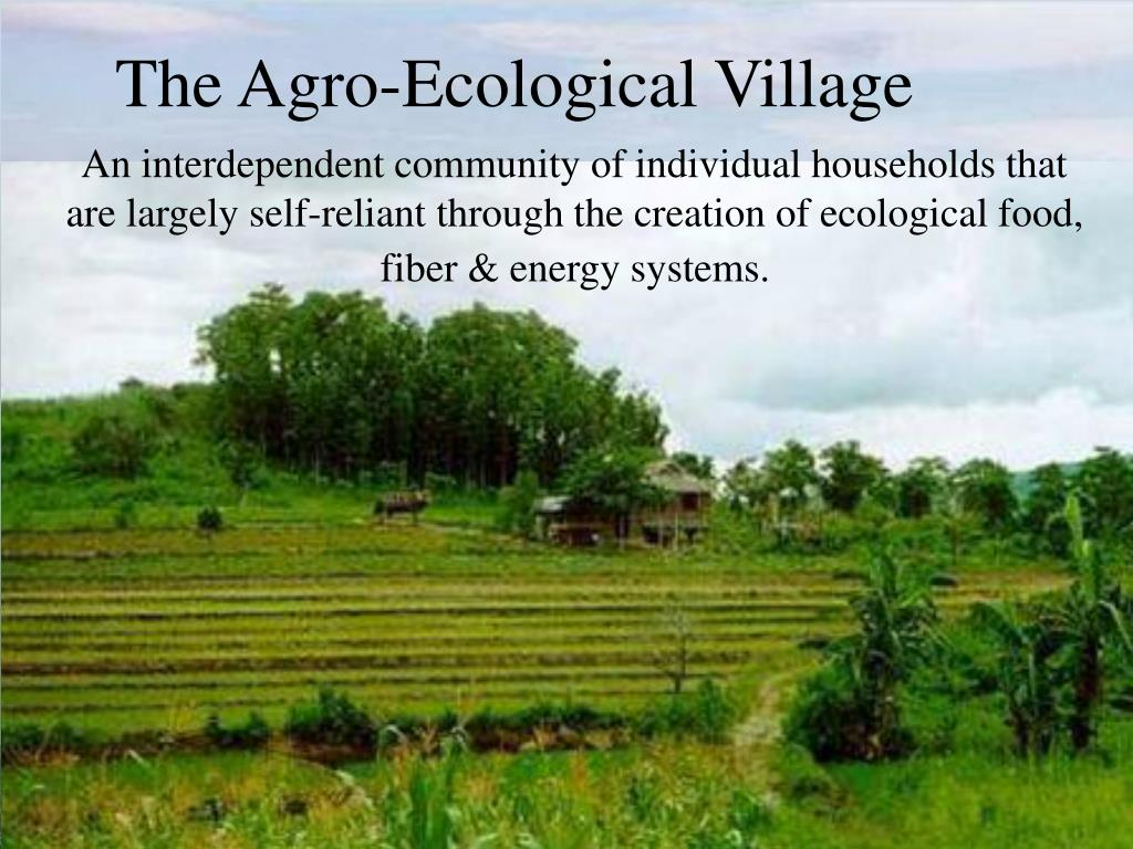 An interdependent community of individual households that are largely self-reliant through the creation of ecological food, fiber & energy systems.