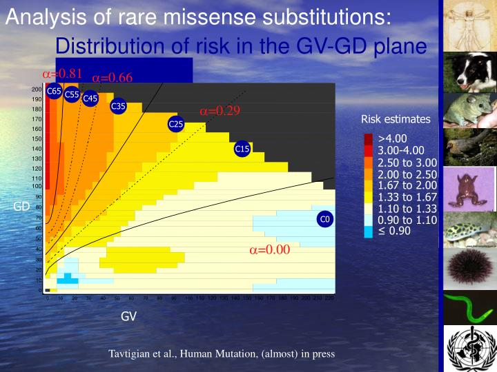 Analysis of rare missense substitutions: