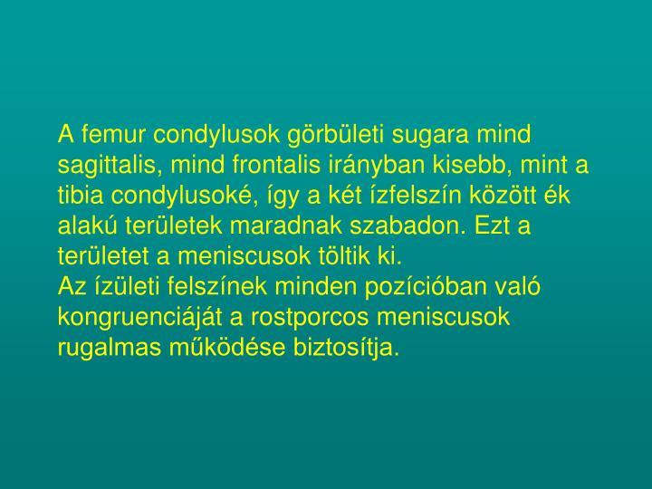A femur condylusok görbületi sugara mind sagittalis, mind frontalis irányban kisebb, mint a tibia condylusoké, így a két ízfelszín között ék alakú területek maradnak szabadon. Ezt a területet a meniscusok töltik ki.