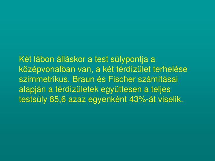 Két lábon álláskor a test súlypontja a középvonalban van, a két térdízület terhelése szimmetrikus. Braun és Fischer számításai alapján a térdízületek együttesen a teljes testsúly 85,6 azaz egyenként 43%-át viselik.