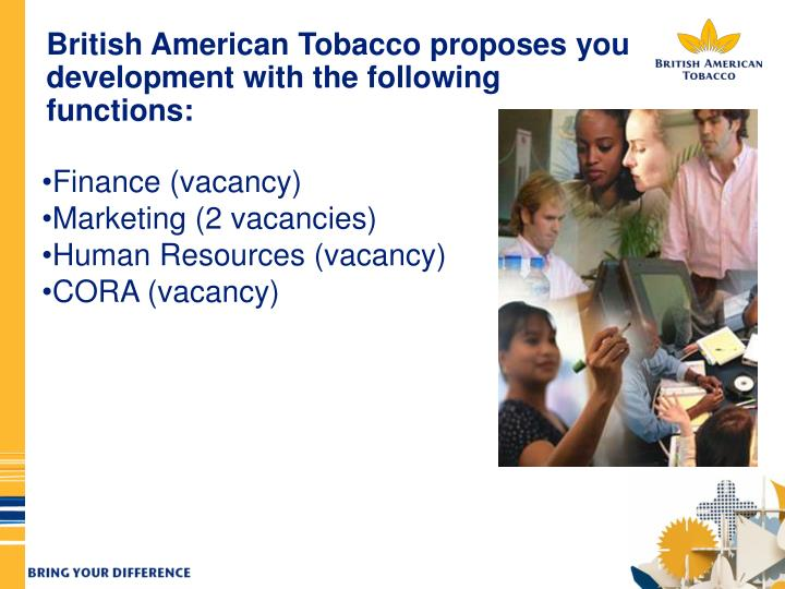 British American Tobacco proposes you development with the following functions: