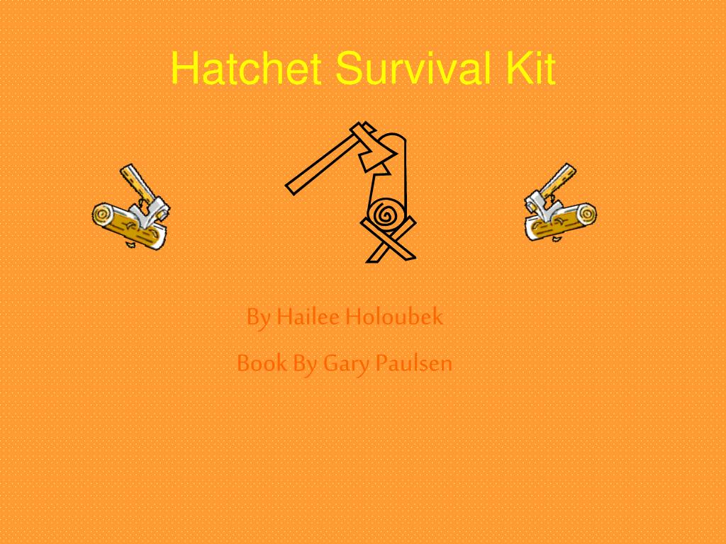 where does the book hatchet take place