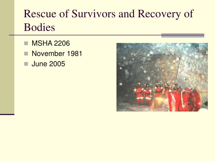 rescue of survivors and recovery of bodies n.