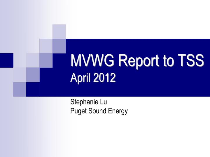 mvwg report to tss april 2012 n.