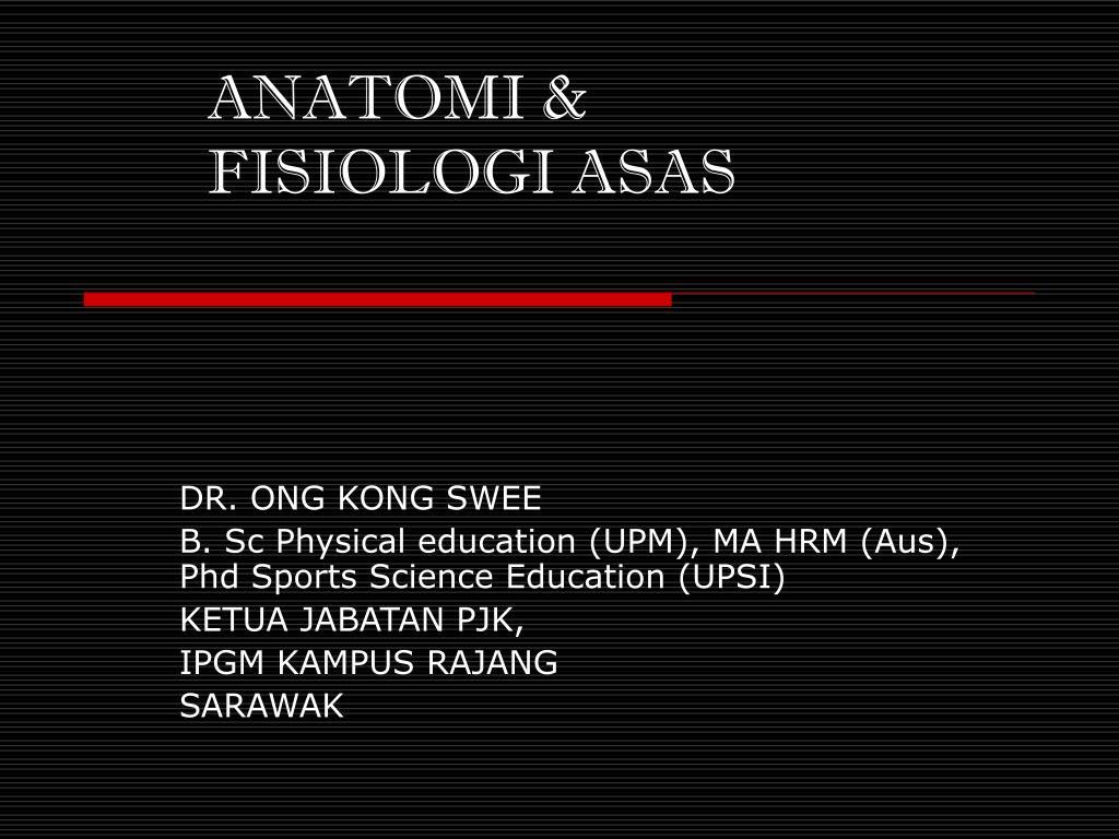anatomi fisiologi asas l.