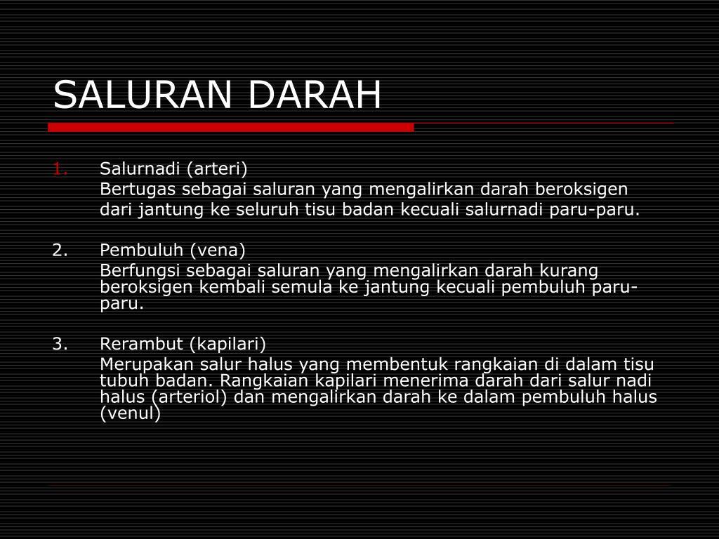 SALURAN DARAH