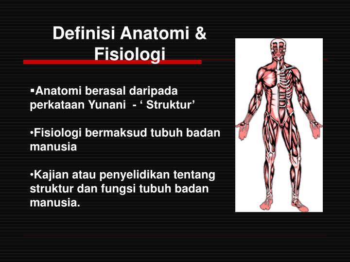 Definisi Anatomi & Fisiologi