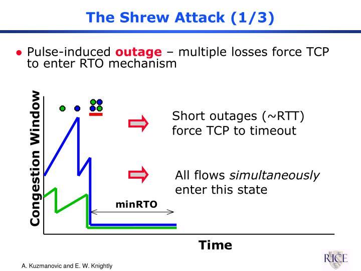 The Shrew Attack (1/3)