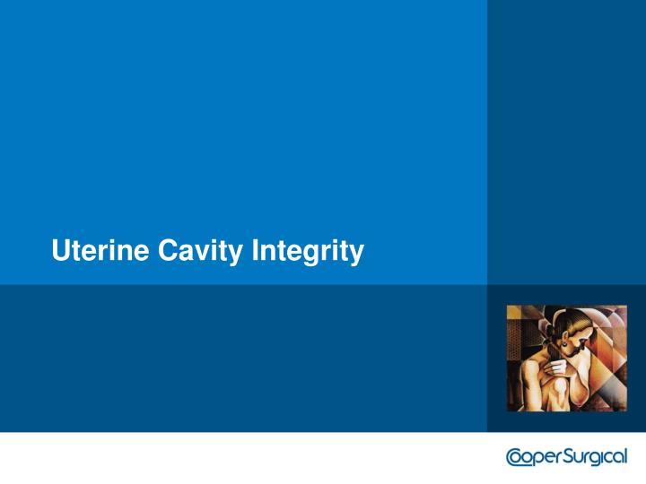 Uterine Cavity Integrity