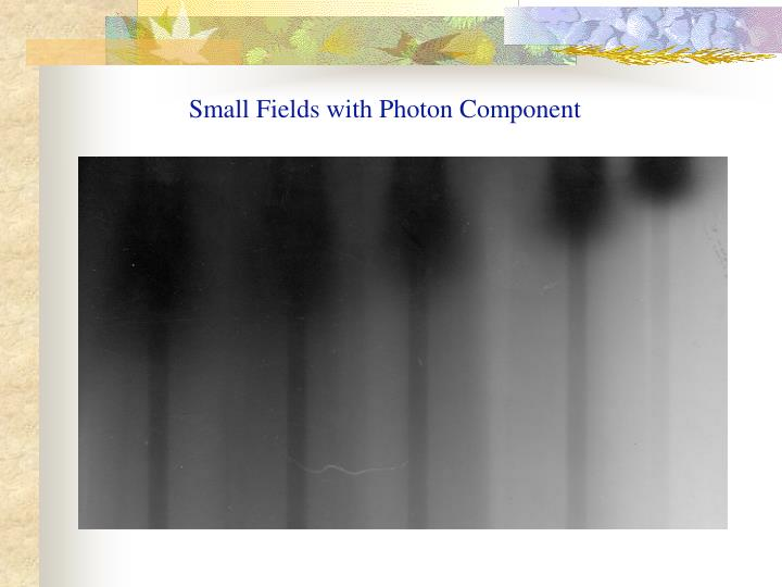 Small Fields with Photon Component
