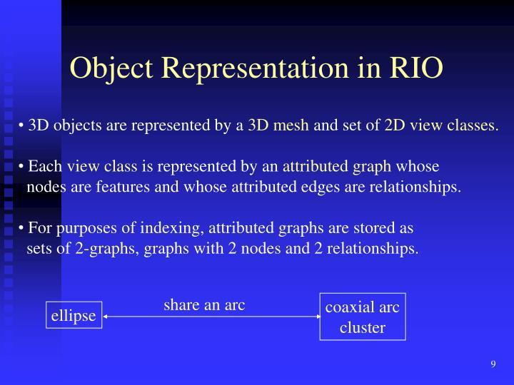 Object Representation in RIO