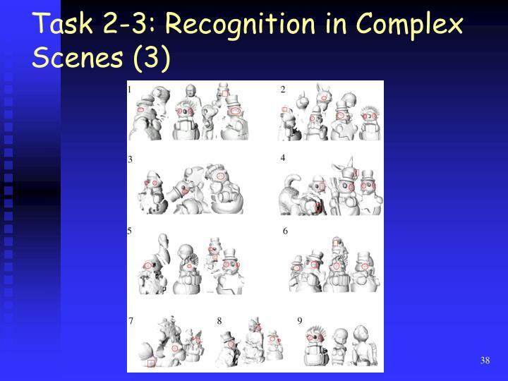 Task 2-3: Recognition in Complex Scenes (3)