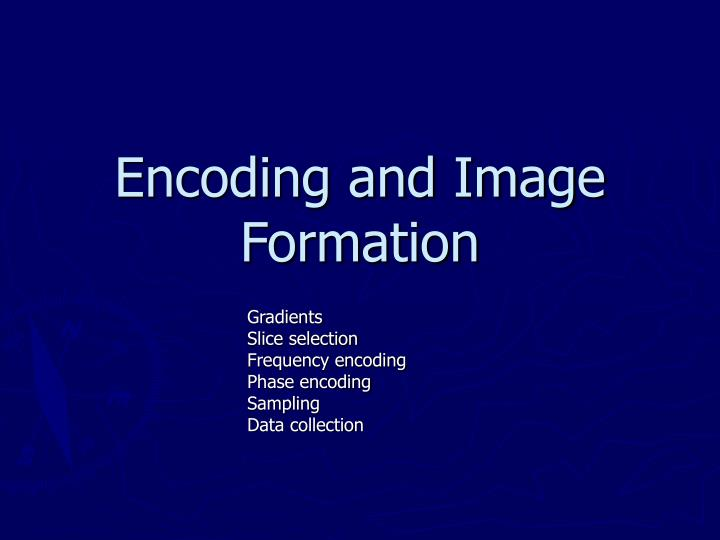 encoding and image formation n.