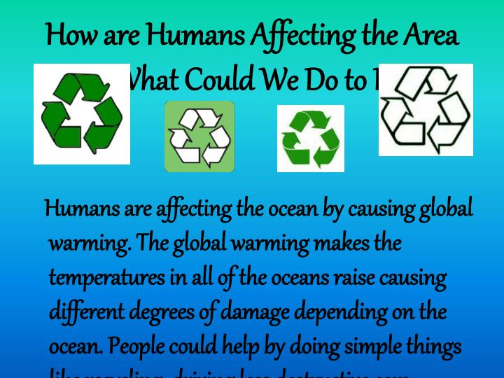 How are Humans Affecting the Area and What Could We Do to Help?