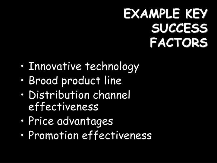 EXAMPLE KEY SUCCESS FACTORS