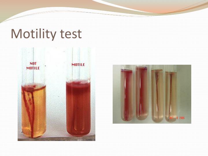 motility testing