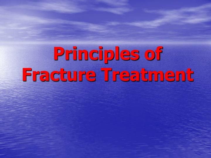 principles of fracture treatment n.